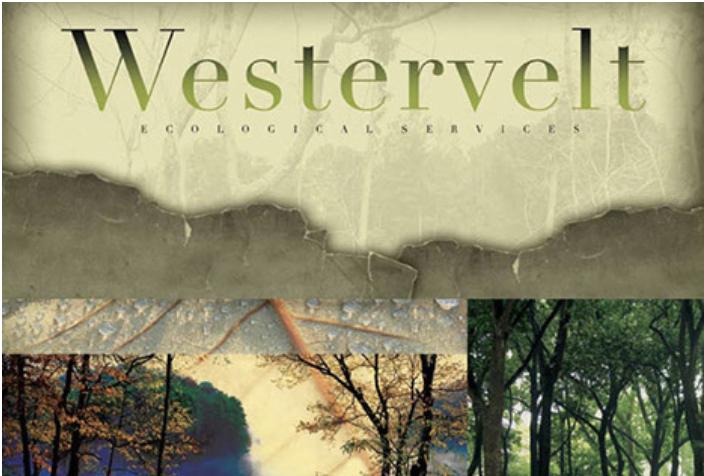 Westervelt